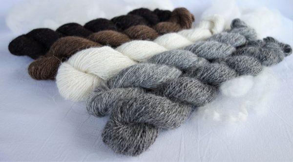 Dégradé de laine filée islandaise – naturelle. 1045-1046-1047-1048-1049